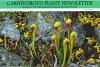 Carnivorous Plant Newsletter - Volume 35, Number 2