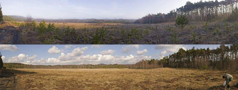 Lokalita před a po našem zásahu. Rozdíl je jednoznačný.