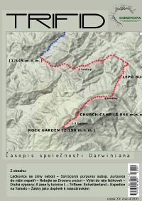 t2010-4.jpg